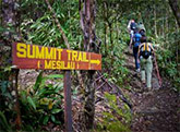 3D2N Mount Kinabalu Climb & Mesilau Nature Resort Stay