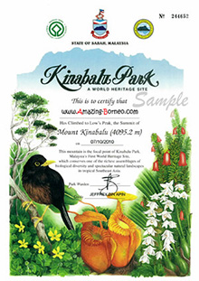 Mt Kinabalu Summit Low's Peak Certificate